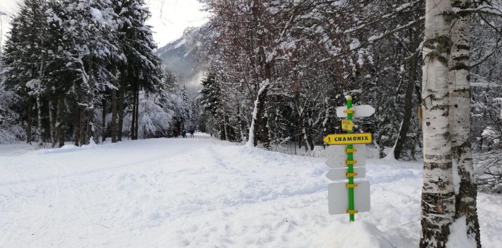 Ski fond bois bouchet